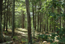 Photo of 00 Mines Road, Blue Hill, ME 04614 (MLS # 1465253)