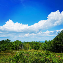 Photo of 0 Sand Point Road, Bar Harbor, ME 04609 (MLS # 1466238)