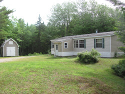 Photo of 156 Bert Gray Road, Sullivan, ME 04664 (MLS # 1426924)
