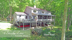 Photo of 6 Shoofly Lane, Franklin, ME 04634 (MLS # 1432903)