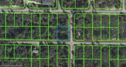 Photo of 321 Nw Beagle Avenue NW, Lake Placid, FL 33852 (MLS # 271851)