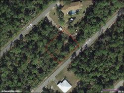 Photo of 1058 Cellini Street, Lake Placid, FL 33852 (MLS # 273914)