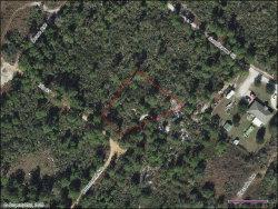 Photo of 1215 Iris Street, Lake Placid, FL 33852 (MLS # 274027)