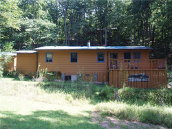 Photo of 2261 Paradise Valley Road, Cleveland, GA 30528 (MLS # 5886618)