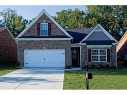 Photo of 61 Ivey Township Drive, Dallas, GA 30132 (MLS # 5922671)