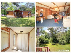 Photo of 1617 Old Canton Road, Ball Ground, GA 30107 (MLS # 5934117)