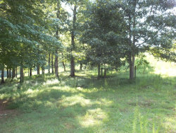 Photo of 0 Old Henry Kinsey Wagon Road, Cleveland, GA 30528 (MLS # 5897834)