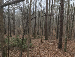 Photo of 0 Campbell Trail, White, GA 30184 (MLS # 5967546)