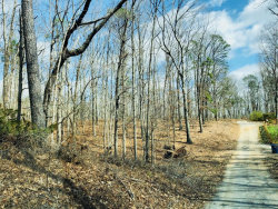 Photo of 0 Upper Sweetwater Trail, White, GA 30184 (MLS # 5976892)
