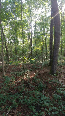 Photo of 000 Claud Sims Road, Cleveland, GA 30528 (MLS # 6062721)