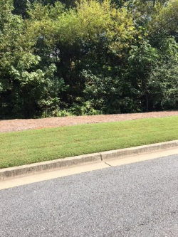 Photo of 0 Hidden Valley Drive, Canton, GA 30115 (MLS # 6075671)