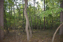 Photo for Lot 6 Grindle Bridge Road, Dahlonega, GA 30533 (MLS # 5624649)