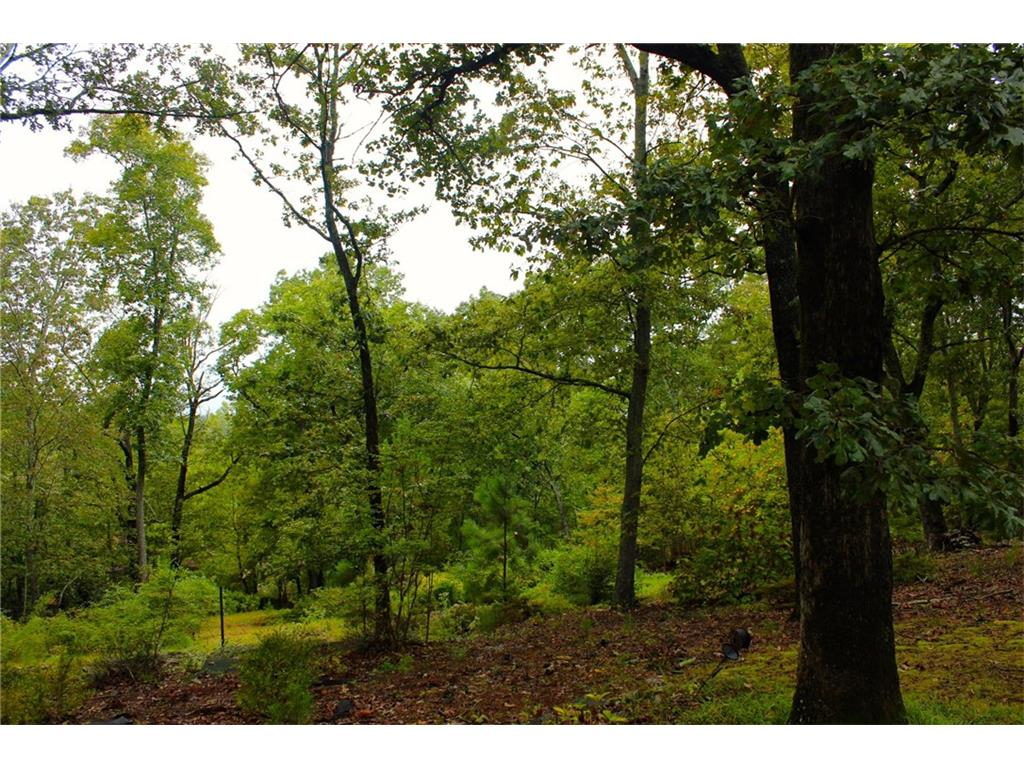 Photo for 2077 Kinridge Court, Lot 14, Marietta, GA 30062 (MLS # 5862665)