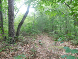 Photo of 3.6 Ac Chestatee River Estates, Dahlonega, GA 30533 (MLS # 5867721)