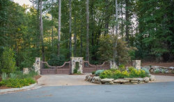 Photo of 371 Lightburn Creek NW, Marietta, GA 30064 (MLS # 5941805)
