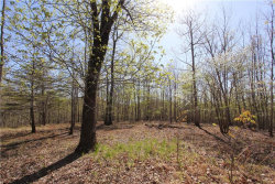 Photo of 0 Wards Creek Drive, Dahlonega, GA 30533 (MLS # 5991592)
