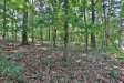 Photo of 02 Grant Point, Lot 0, Dawsonville, GA 30534 (MLS # 6043494)