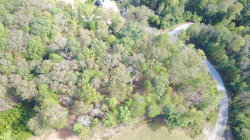 Photo of 929 Golden Bear Pass, Lot 929, Dahlonega, GA 30533 (MLS # 6088963)