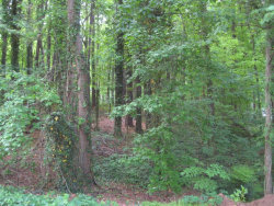 Photo of 3779 Hardee Drive, Lot 52, Kennesaw, GA 30152 (MLS # 6100472)