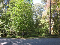 Photo of 62 Miners Place, Lot 512, Dahlonega, GA 30533 (MLS # 6106256)
