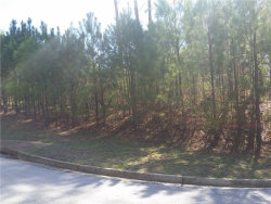 Photo of 57 Santa Cruz Court, Lot 10, Dallas, GA 30157 (MLS # 6106605)