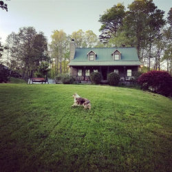 Photo of 1367 Grizzle Road, Dawsonville, GA 30534 (MLS # 6123239)
