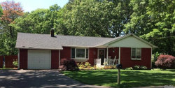 Photo of 50 Silas Carter Rd, Manorville, NY 11949 (MLS # 3135211)