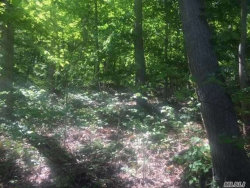 Photo of Spring Hollow Rd, Nissequogue, NY 11780 (MLS # 3132979)