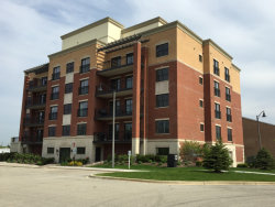 Photo of 10735 W Clocktower Drive, Unit Number 403, COUNTRYSIDE, IL 60525 (MLS # 09505799)