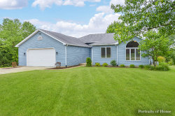 Photo of 15 Shagbark Lane, NEWARK, IL 60541 (MLS # 09616774)