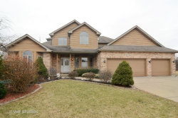 Photo of 803 Andover Court, PROSPECT HEIGHTS, IL 60070 (MLS # 09652686)