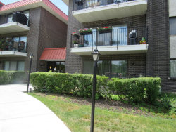 Photo of 1255 W Prospect Avenue, Unit Number 302, MOUNT PROSPECT, IL 60056 (MLS # 09665844)