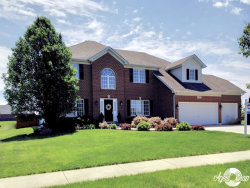 Photo of 16518 S Mueller Circle, PLAINFIELD, IL 60586 (MLS # 09668597)