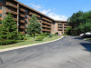 Photo of 120 Lakeview Drive, Unit Number 111, BLOOMINGDALE, IL 60108 (MLS # 09671658)