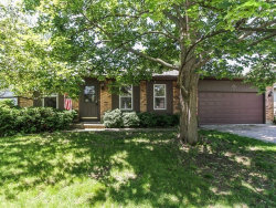 Photo of 370 S Garden Avenue, ROSELLE, IL 60172 (MLS # 09694497)