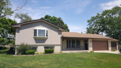 Photo of 101 S Constance Avenue, COUNTRYSIDE, IL 60525 (MLS # 09701034)