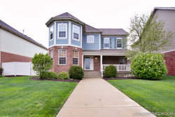 Photo of 202 Shannon Parkway, ELGIN, IL 60123 (MLS # 09702051)