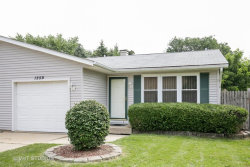 Photo of 1259 Robinwood Drive, Unit Number 1259, ELGIN, IL 60123 (MLS # 09703126)