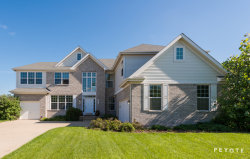 Photo of 480 Blue Heron Circle, BARTLETT, IL 60103 (MLS # 09707847)