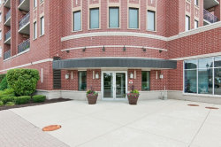 Photo of 225 Main Street, Unit Number 207, ROSELLE, IL 60172 (MLS # 09721234)