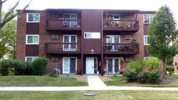 Photo of 672 Daisy Lane, Unit Number 212, ROSELLE, IL 60172 (MLS # 09744367)