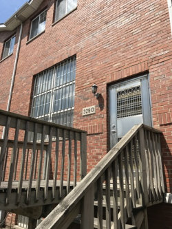Photo of 329 W 25th Place, Unit Number D, CHICAGO, IL 60616 (MLS # 09747032)