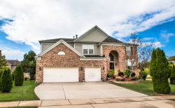 Photo of 518 Wildflower Way, STREAMWOOD, IL 60107 (MLS # 09757369)