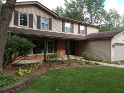 Photo of 1704 Fender Road, NAPERVILLE, IL 60565 (MLS # 09758294)
