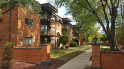 Photo of 2345 185th Court, Unit Number 18, LANSING, IL 60438 (MLS # 09767814)