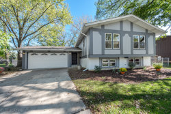 Photo of 6913 Parkview Drive, DOWNERS GROVE, IL 60516 (MLS # 09777455)