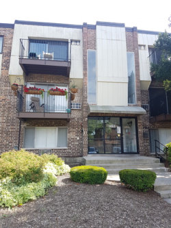 Photo of 1455 Winslowe Drive, Unit Number 204, PALATINE, IL 60074 (MLS # 09778599)