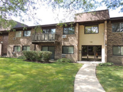 Photo of 2636 N Windsor Drive, Unit Number 201, ARLINGTON HEIGHTS, IL 60004 (MLS # 09779134)