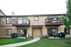 Photo of 752 Rodenburg Road, Unit Number 2B, ROSELLE, IL 60172 (MLS # 09783490)