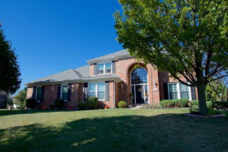 Photo of 13640 Eagle Feather Court, PLAINFIELD, IL 60544 (MLS # 09783599)